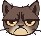 Looks like Grumpy cat coin (GRUMPY) just got rugpulled.