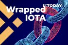 Wrapped IOTA Has Launched on Binance Smart Chain